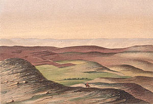 Shepherds Fields Near Jerusalem
