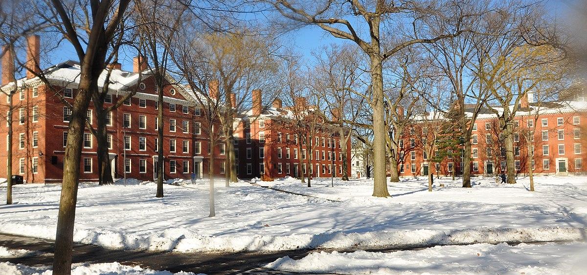 Harvard University Wikipedia