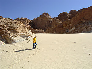 Sand dune on the Sinai Peninsula.