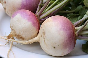 English: Turnips (Brassica rapa) Français : Na...