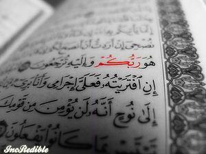 Quran Macro