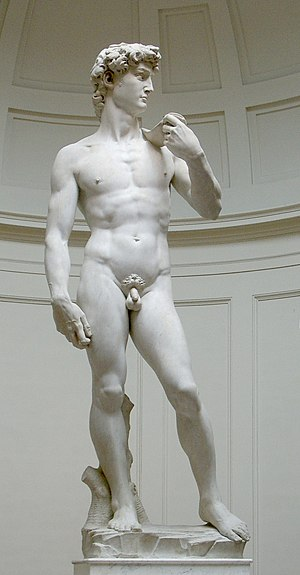 Michelangelo's David (original statue)