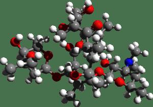 Erythromycin structure