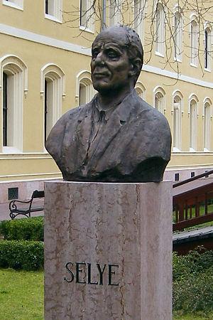 English: Bust of Hans Selye Magyar: Komárom - ...