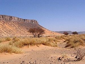 Français : Désert Algérie