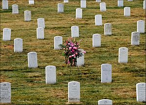 Arlington National Cemetery Graves (Burial Cri...
