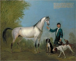 English: Horse with Groom and Hounds. Tilleman...
