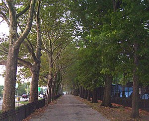 A walkway in Riverside Park in Manhattan, New ...