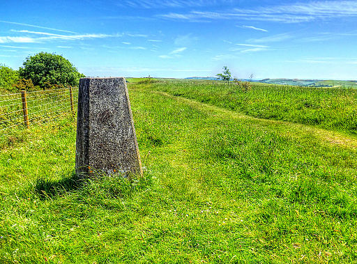 Trig Point Kithurst Hill