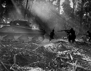 U.S. Army soldiers on Bougainville (one of the...
