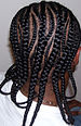 English: long cornrow design