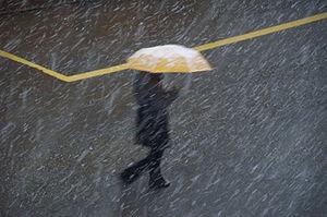 yellow, Umbrella, bad weather