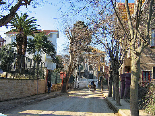 A street in Büyükada.