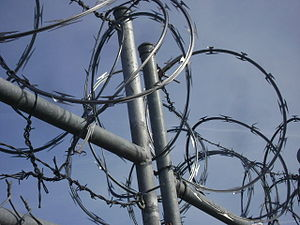 English: A bunch of Razor Wire atop a chain li...