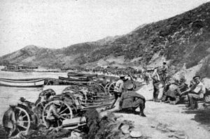 Australian and New Zealand forces landed on Tu...