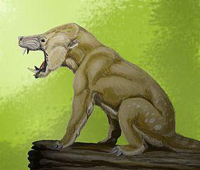 El género Arctocyon pertenece a los Condilartros