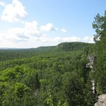 File Cup And Saucer Trail 3882211251 Jpg Wikimedia Commons