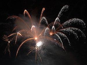 Fogos de artif�cio para celebrar a chegada do Ano-Novo em Seaport Village