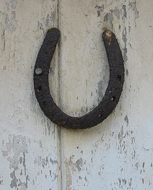 A horseshoe on a door is regarded as a protect...