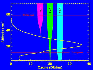 Levels of ozone at various altitudes and block...