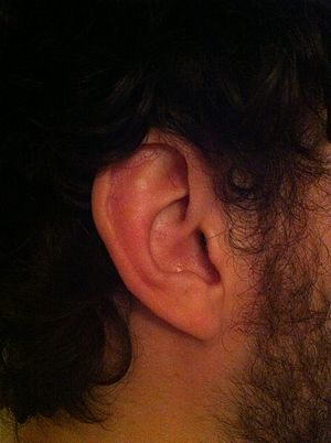 Ear. Good for listening.