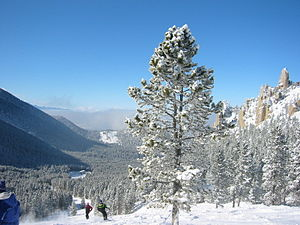 Red Lodge Mountain Resort, looking at the Pali...