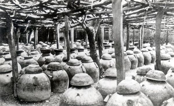File:Awamori production - jars of moromi.jpg