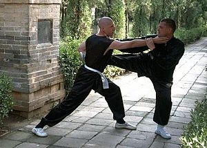English: Sifu Licht training with his partner ...