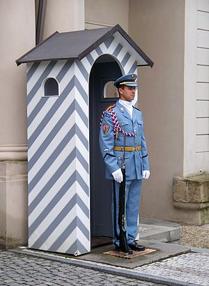 English: A guard at Prague Castle.