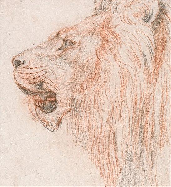File:Head of a Lion - Google Art Project.jpg