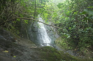Pali Hike Waterfalls