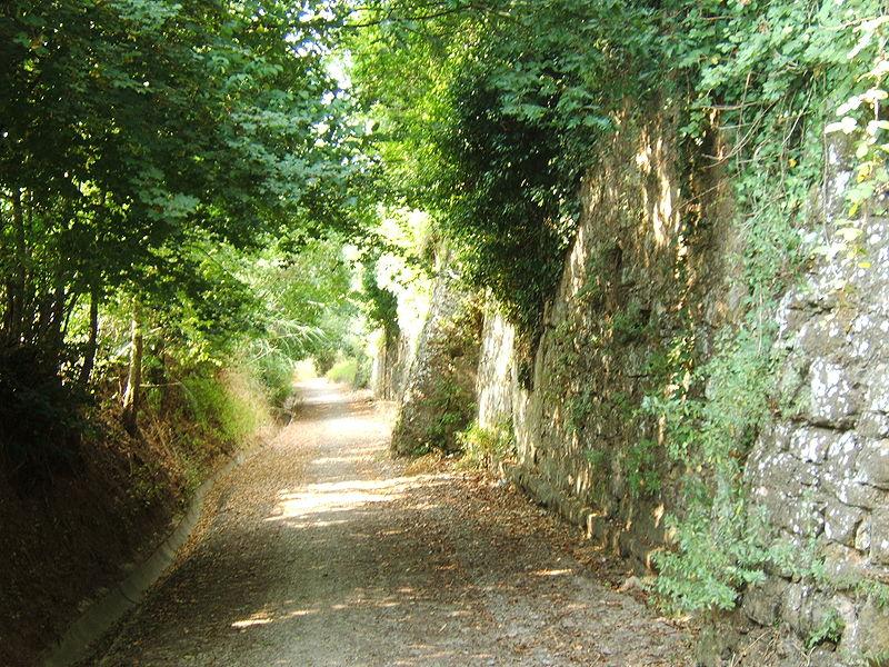 File: Mura del bargo di Bonistallo.JPG
