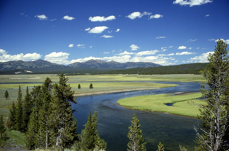Berkas:Yellowstone River in Hayden Valley.jpg