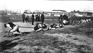 Tug of war contested at the 1904 Summer Olympi...