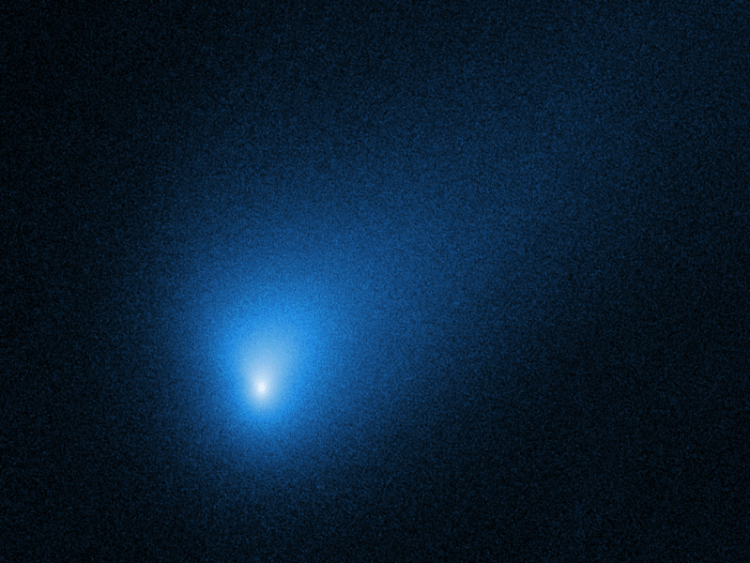 Comet-2IBorisov-HubbleST-20191016 (cropped).png