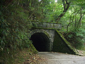 Old Amagi Tunnel which is famous for The Danci...