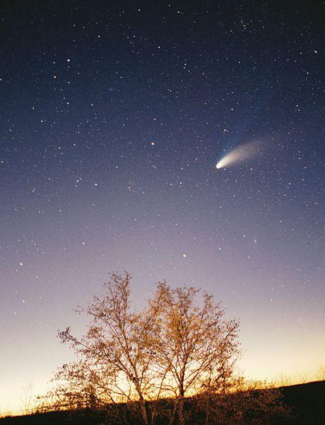File:Comet-Hale-Bopp-29-03-1997 hires adj.jpg