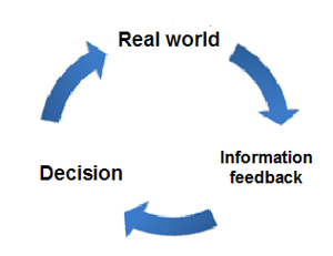 Process of learning as feedback