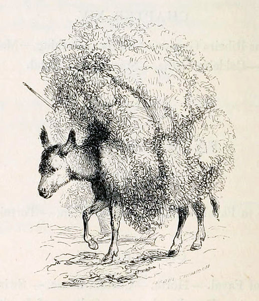 File:St. Michaels ass laden with heath and firewood, Bullar 1841, p. xiv.jpg