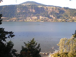 English: View from Columbia Gorge Hotel, Hood ...