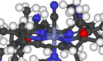 The octahedral cobalt centre of Vitamin B 12