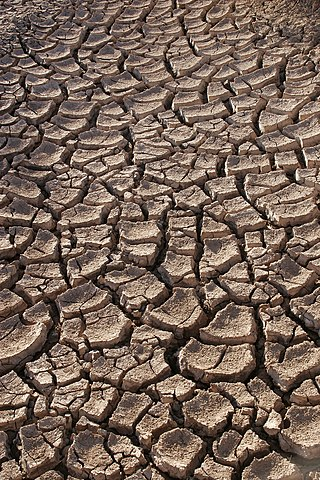 Terra argilosa clivellaa (Font: viquipèdia)
