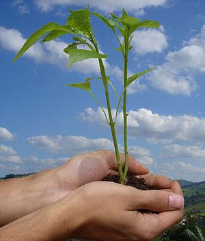 Preservação do meio ambiente!
