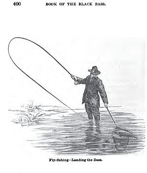 Fly Fishing - Landing the Bass from Book of th...