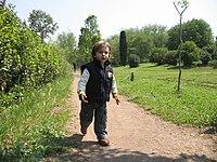 Boy toddler