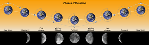 Phases of the Moon, as seen from the Northern ...