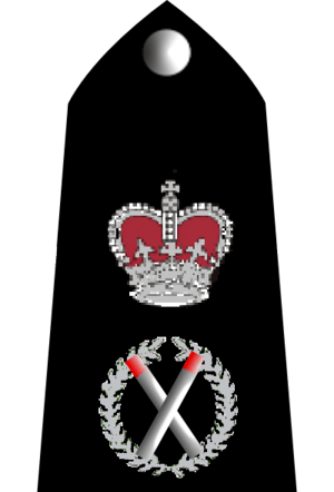 English: UK Police Chief Constable rank markings