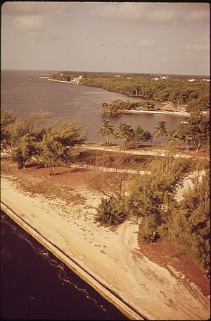 FLORIDA-NEAR MATHESON HAMMOCK, SOUTH OF MIAMI ...