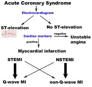 Scheme of different terms surrounding myocardi...