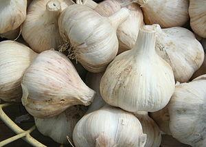 English: A basket of garlic (allium sativum) o...